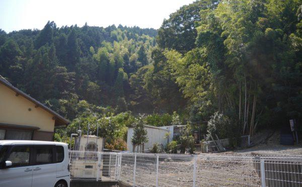 施設の正面には山があり、緑が目に優しいです。