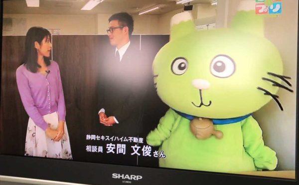 しずなび介護なびの活動が【静岡第一テレビ しずプリα】で紹介されました。
