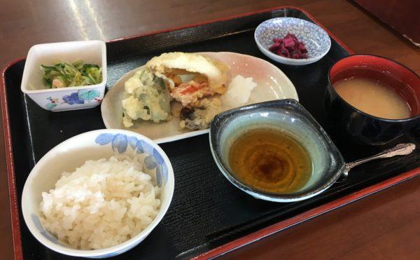 お食事一例 (天ぷら)(みかんの郷)