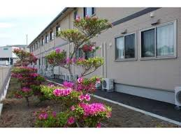 広い敷地内をきれいな花々が彩ります