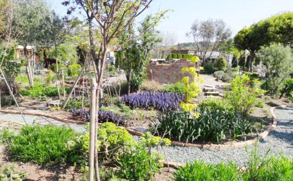 イングリッシュ・ガーデン② ガーデン内には遊歩道が設置されていて散歩するのが楽しみな空間です。(グループホーム今日香)