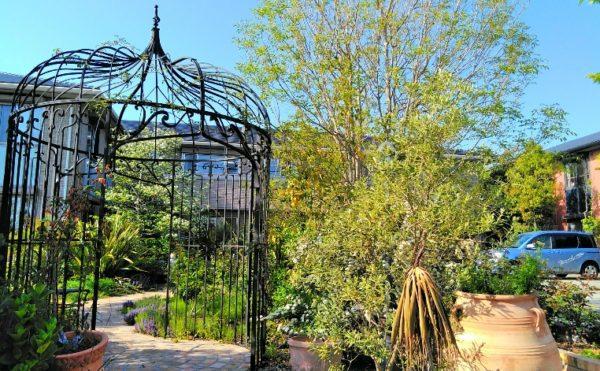 敷地内庭園② 庭園内には石調の遊歩道が作られていて快適な散歩をすることが出来ます。(グランマ「ハノン」&「カノン」)