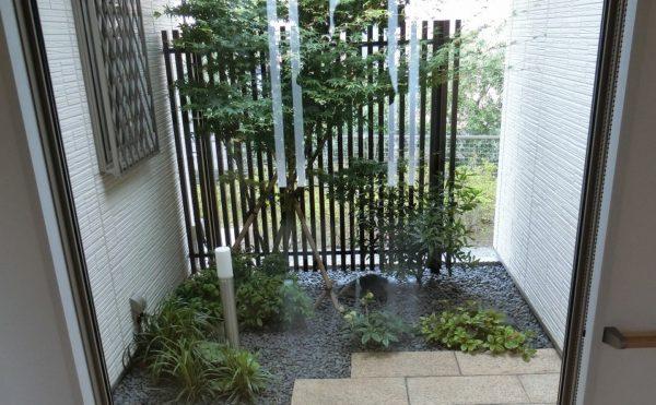 坪庭 施設の中からは大きなFIX窓から坪庭が望め、よく手入れのされた植物などの緑が心を癒します。(グループホームつどい)