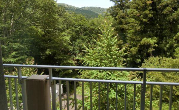 居室から青々とした景色が望めます。
