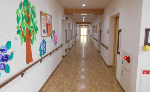 明るい廊下 大きな窓があり、一直線の廊下は明るく広く、両側には手すりが設置されています。(クオリティリビングおかりや)