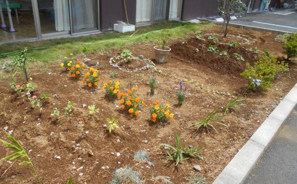 手入れされたお庭② 様々な植物や草花を植えて毎日の楽しみの一つになります。 (クオリティリビングおかりや)