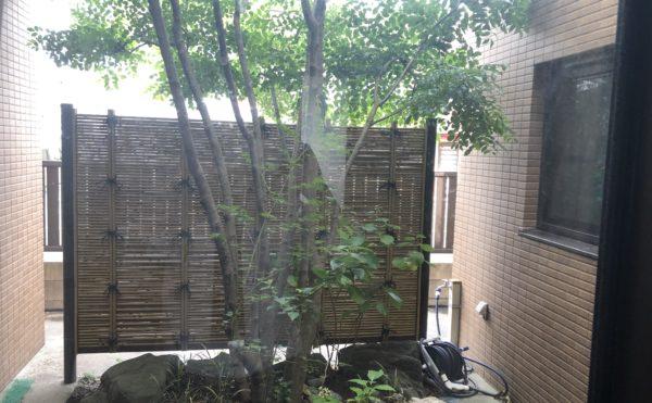 中庭 中庭には大きなシンボルツリーが設置されて見る人を和ませてくれます。(グループホーム ケアクオリティシャンテ)