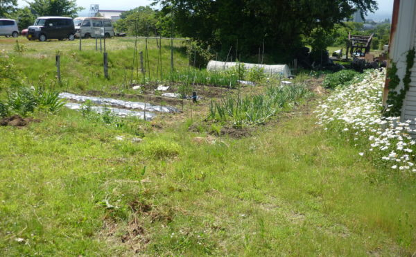敷地に畑スペース 広い敷地には様々な植物や花・畑があり、自然と触れ合うことが出来ます。(グループホーム東山)