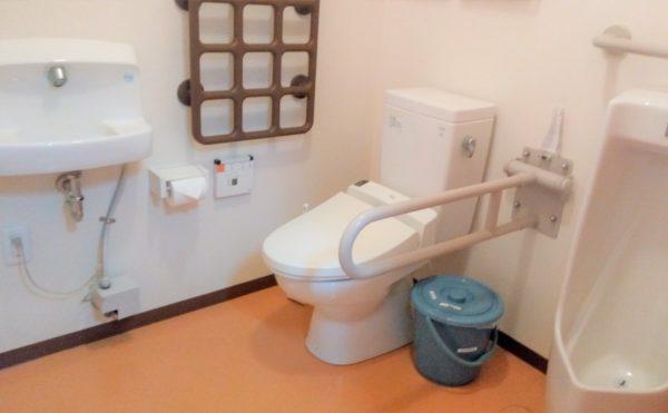 トイレ 清潔感もあり、手すりが適所に設置されているため、安心してご利用する事が出来ます。(グループホーム 水垂の里)