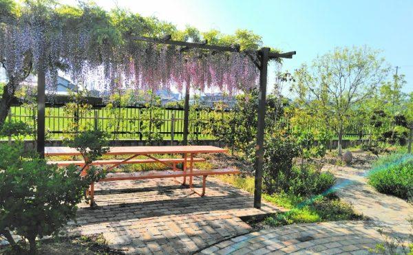 敷地内庭園③ 遊歩道の先にはパーゴラとベンチが設置されていて自然を満喫することが出来ます。(グランマ「ハノン」&「カノン」)