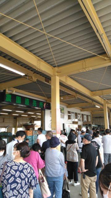甘甘娘を求めて鈴木農園には長蛇の列。並ぶこと2時間で最前列まで到達。