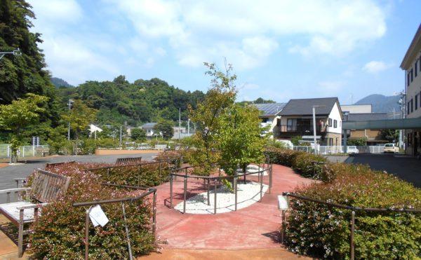 《静岡市駿河区 介護付き老人ホーム》認知症の進行した母を身体が元気なうちに安心できる施設へ