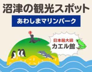 沼津の見どころ③  (あわしまマリンパーク)